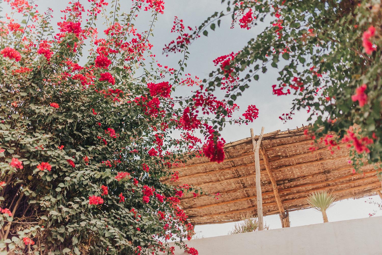 Reisefotografie Marrakesch
